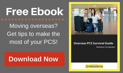 Tips and Tricks for a Successful PCS to Okinawa, Japan