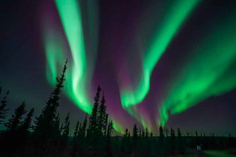 Aurora Borealis (Northern Lights) near the Arctic Circle in Alaska