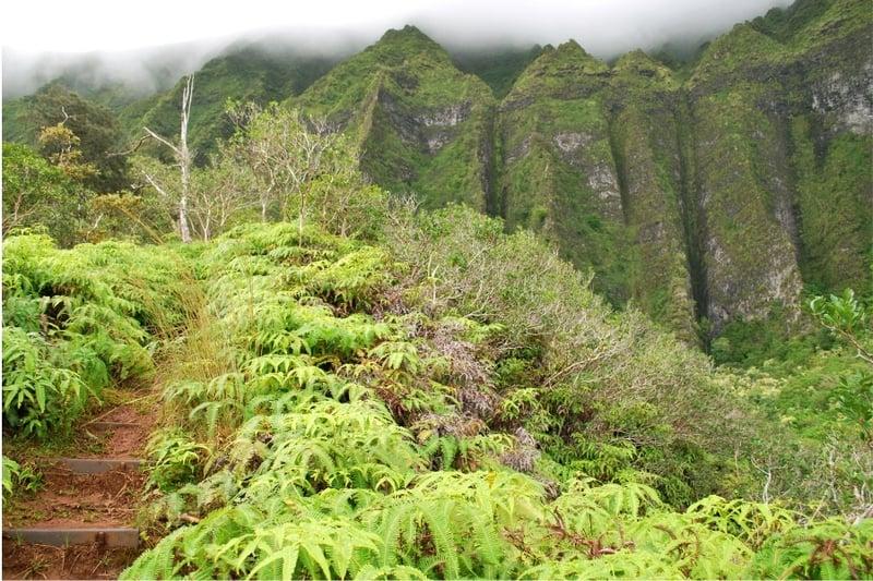 Oahu activities 1