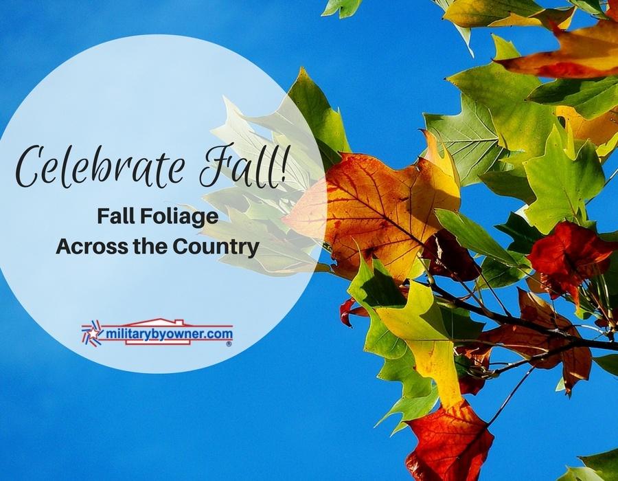Celebrate_Fall.jpg