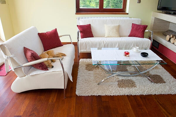 Don't include pets in your home listing photos.