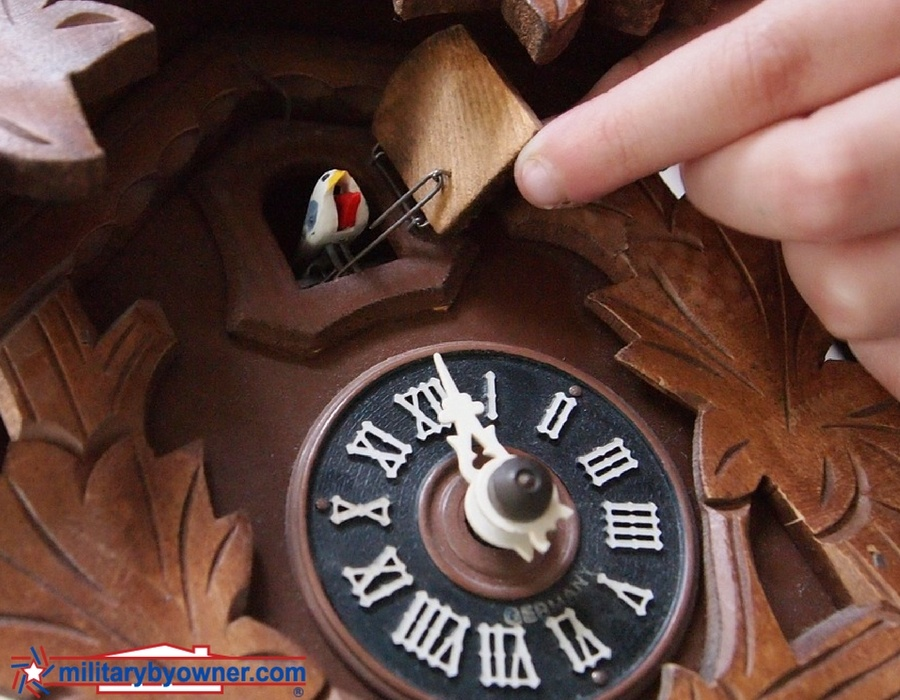cuckoo_clock.jpg