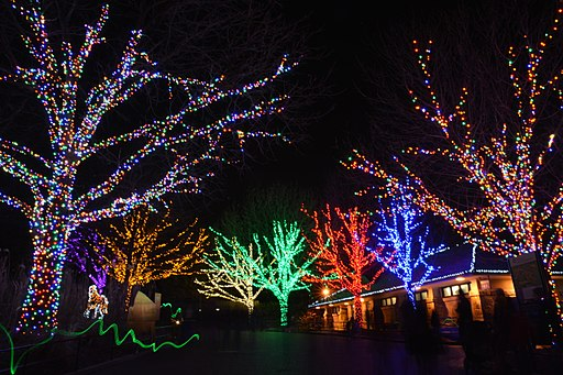 Zoo Lights in D.C.