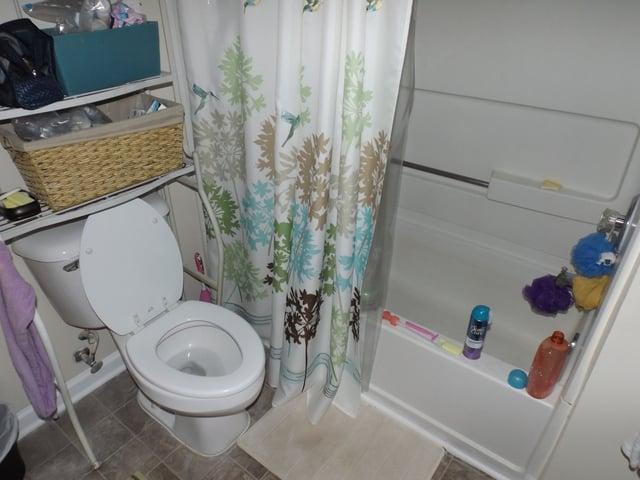 bad_bathroom_photo_public_domain.jpg