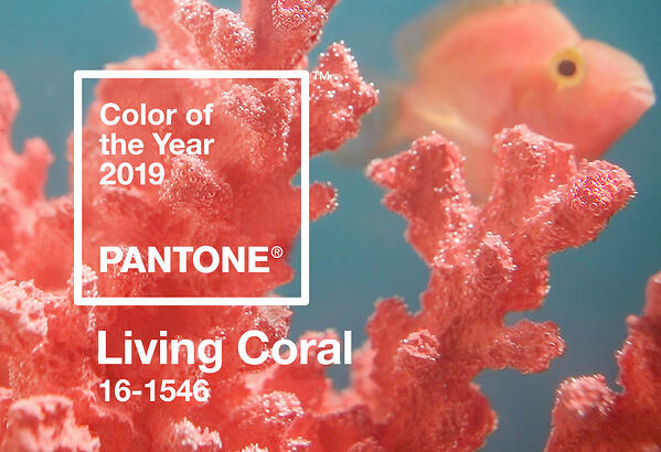 Pantone's 2019 Color of the Year