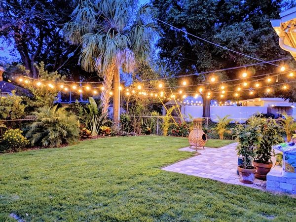 Tampa Back Yard