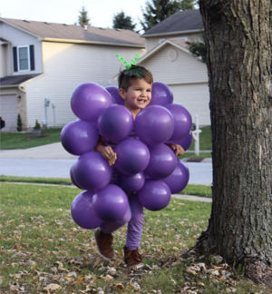 Bunch of Grapes halloween costume for kids