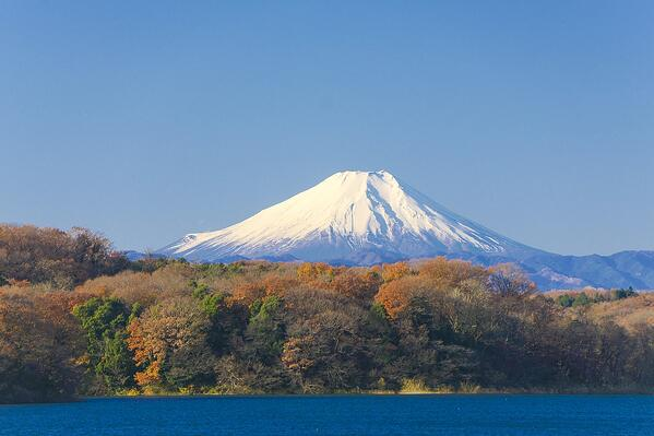 Must-Know Tips for a Military Move to Japan