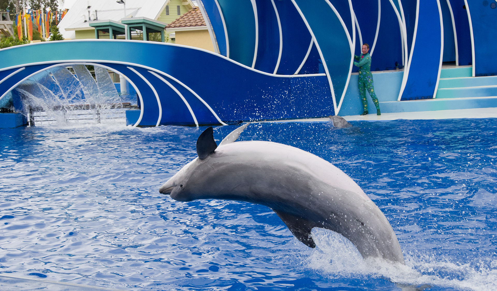 SeaWorld San Dieg