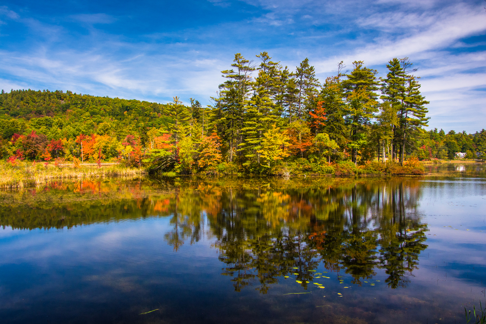 Early autumn color at North Pond, near Belfast, Maine.