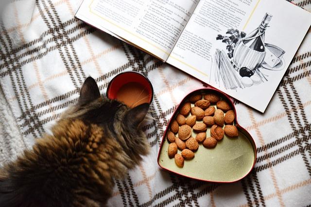 cat_table.jpg