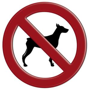dog-banned-breedAdobeStock_42382302.jpg
