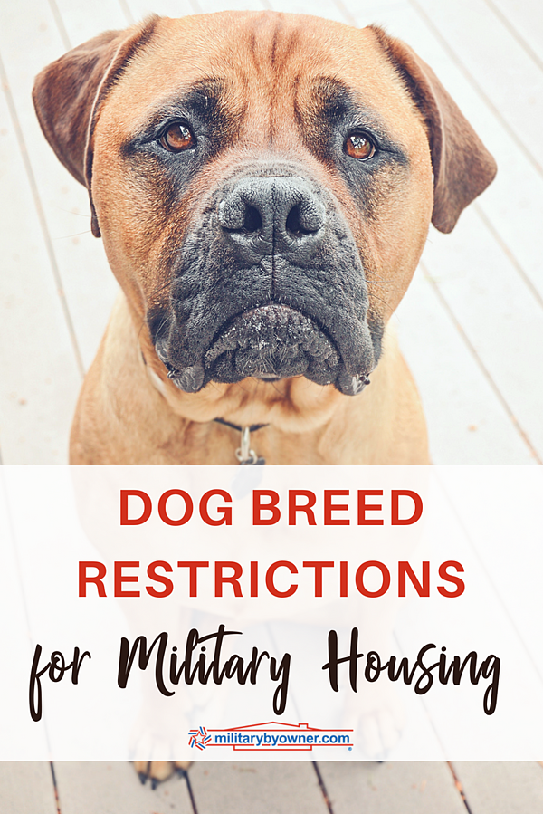Dog Breed Restrictions for Military Housing