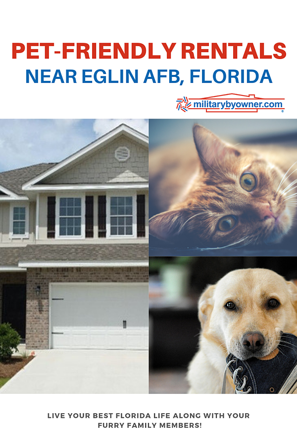 Pet-friendly Rentals Near Eglin AFB Florida