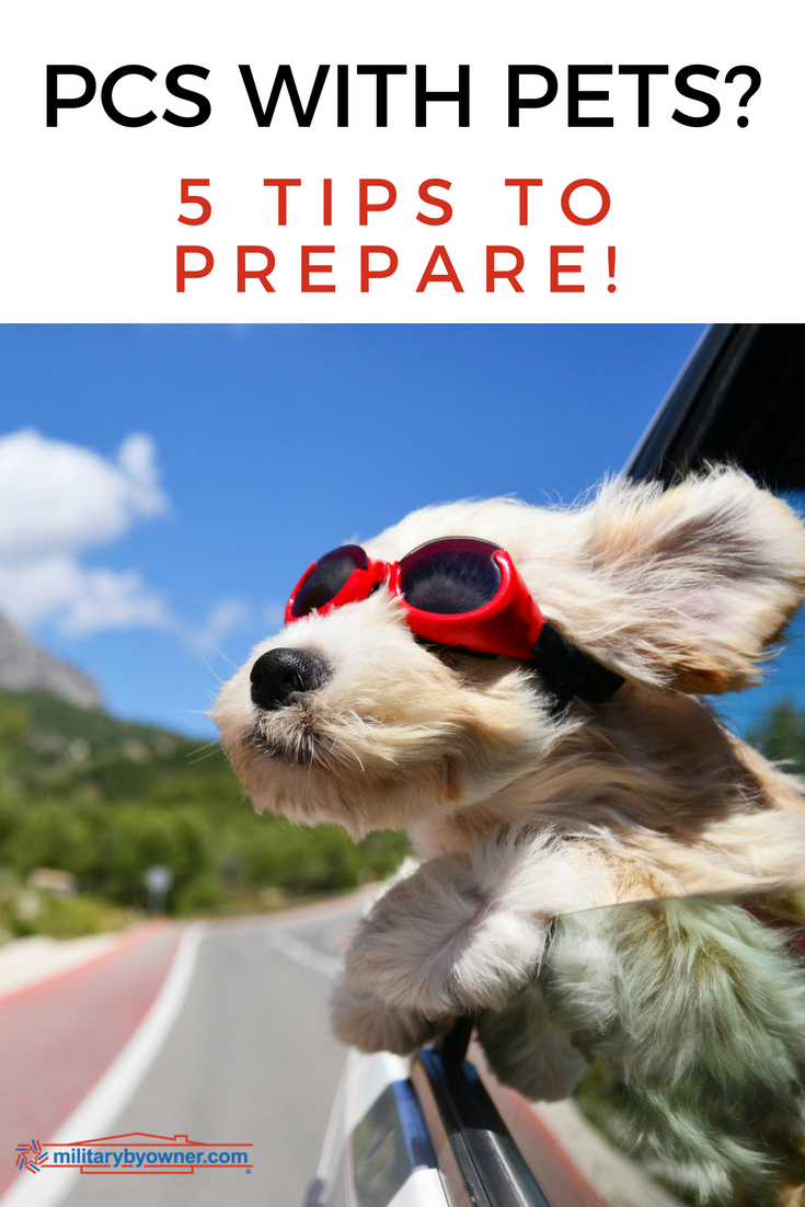 5 Tips to Prepare for a Military Move with Pets
