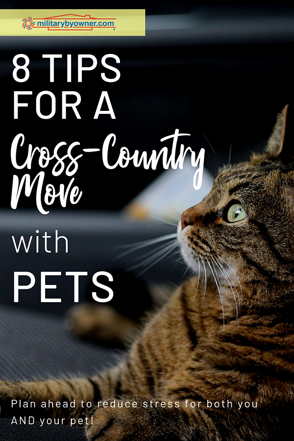 Plan Ahead for a Cross-Country Move with Pets