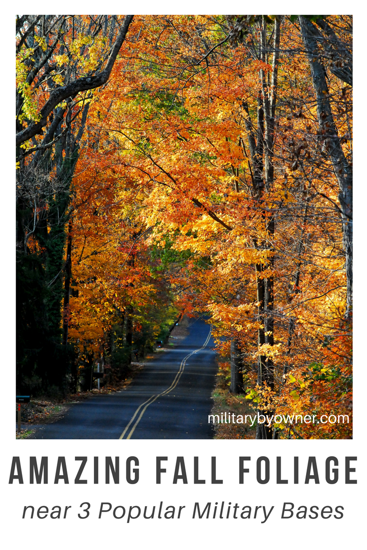 Celebrate fall foliage near 3 military installations.