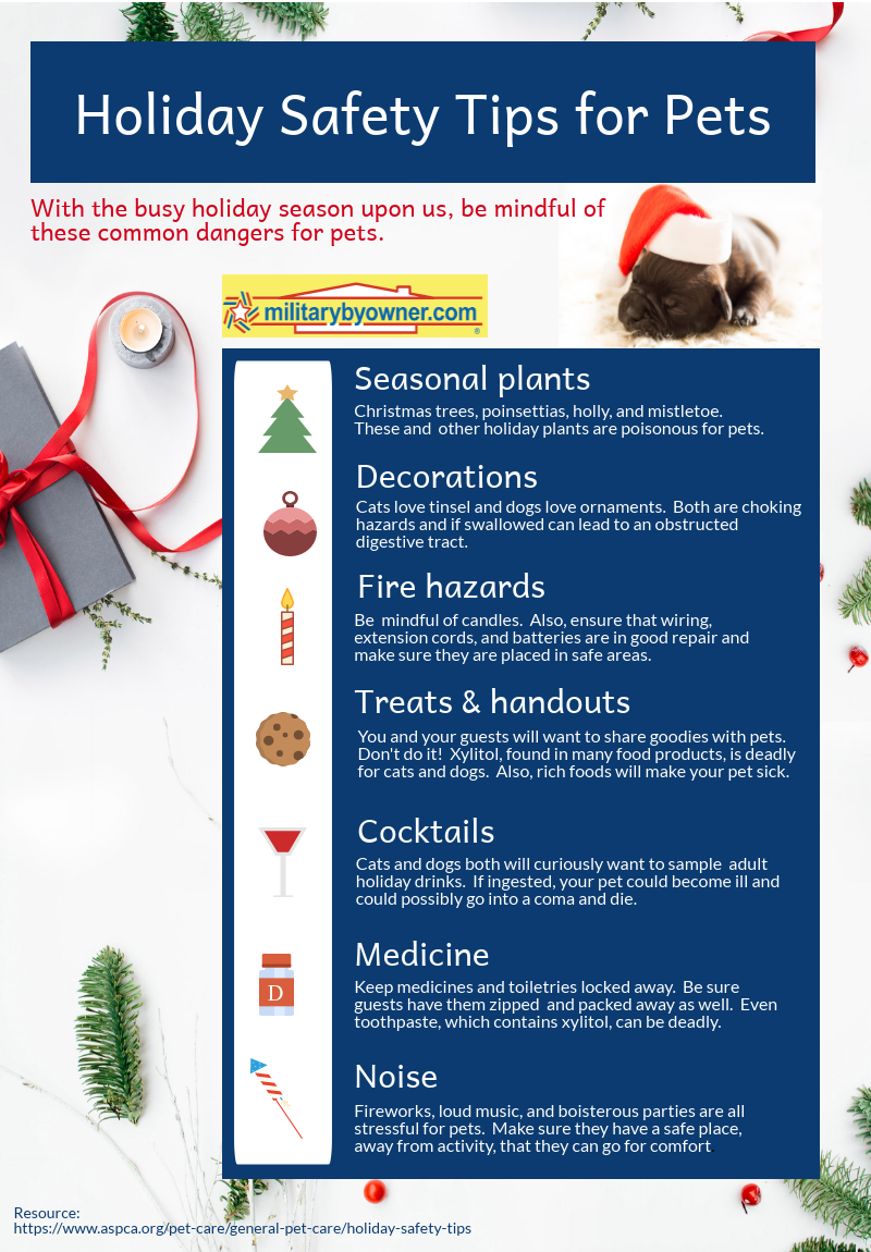 MilitaryByOwner Holiday Safety for Pets