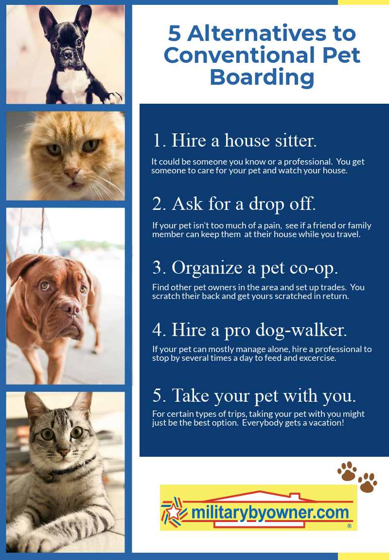 Pet_alternatives_boarding_infographic.png