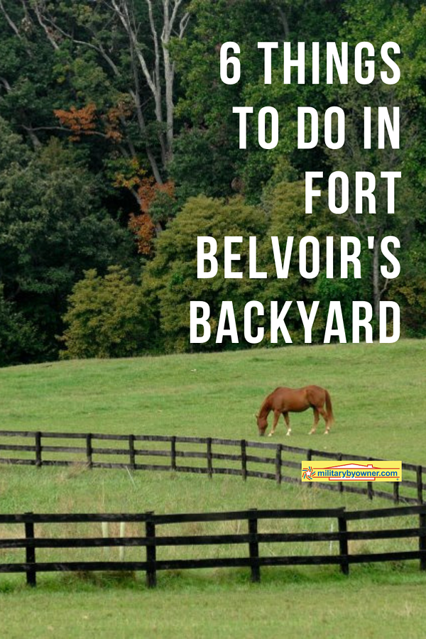 6 things to do in fort belvoirs backyard