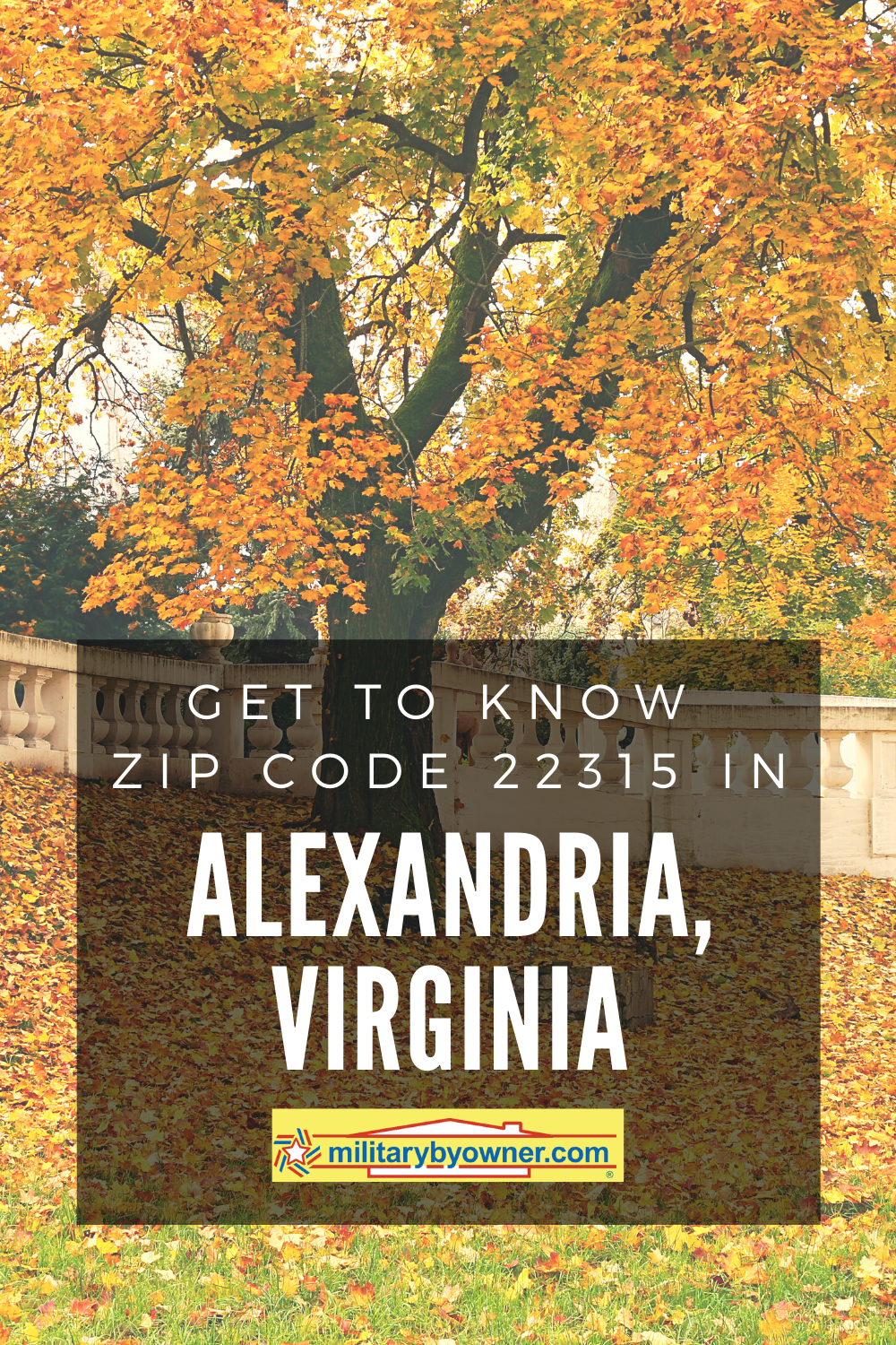 Get to Know Zip Code 22315 in Alexandria