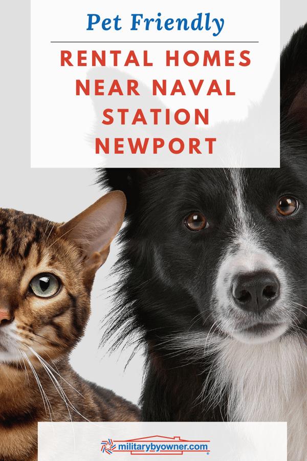 Pet Friendly Rental Homes Near Naval Station Newport