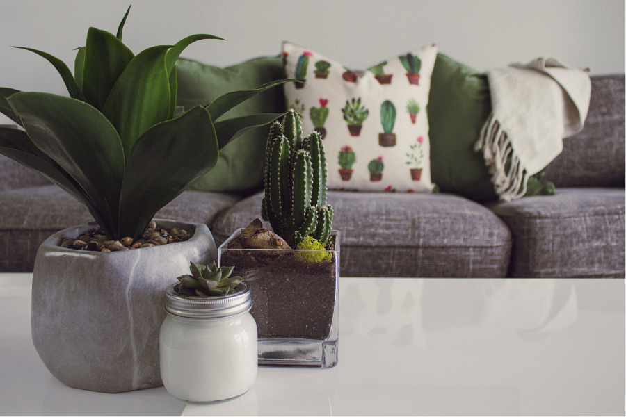 Use the Rule of Three in your home decorating.