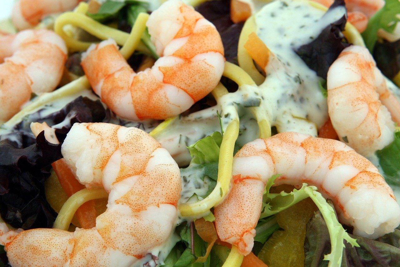 shrimp sald