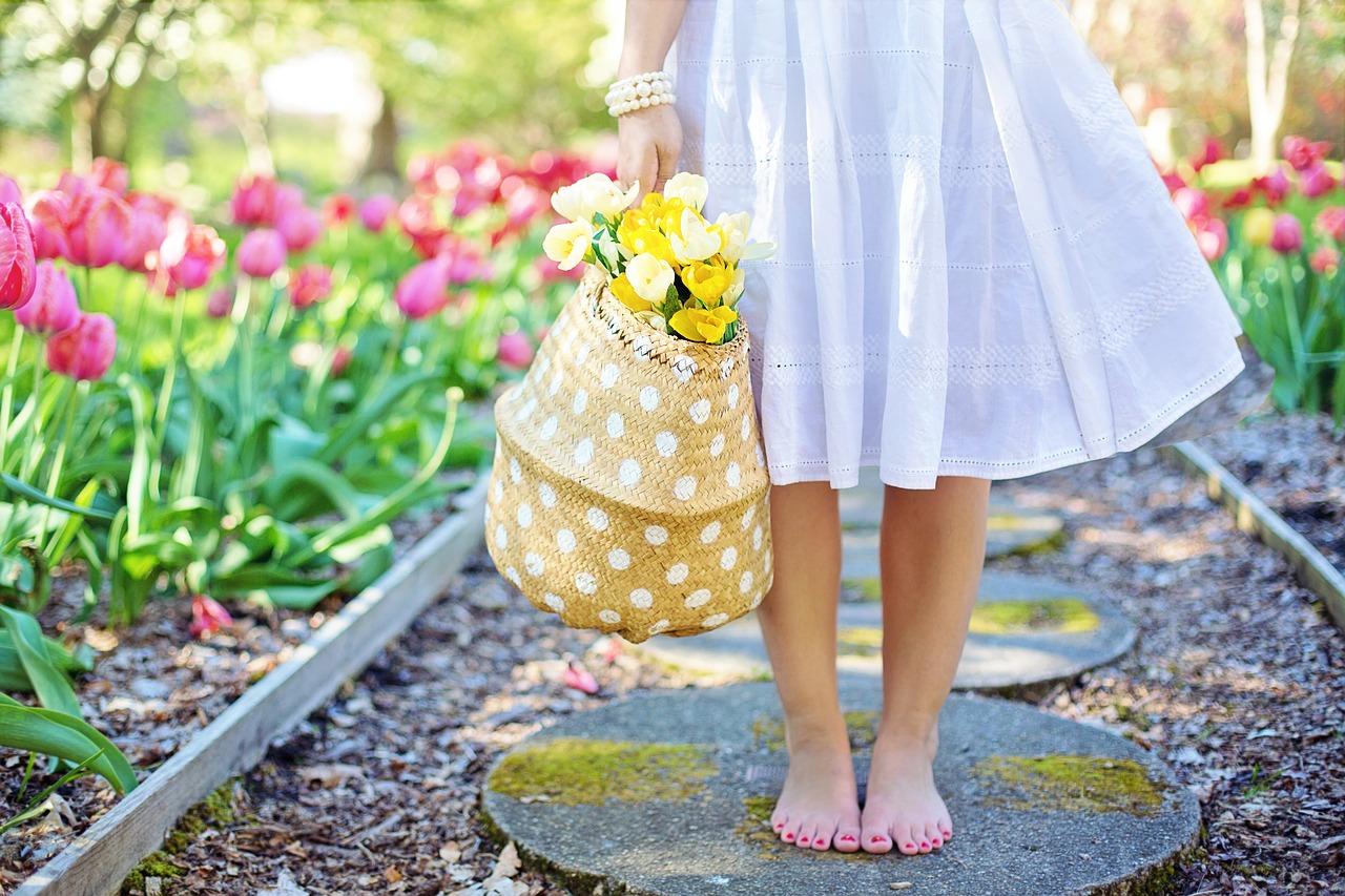 spring-2298279_1280.jpg