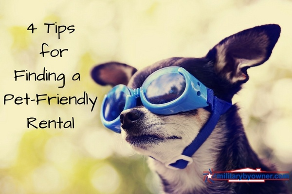 4_Tips_for_Finding_a_Pet-Friendly_Rental_1.jpg