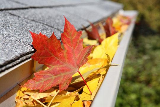 fall_home_maintenance_for_military_homeowners.jpg